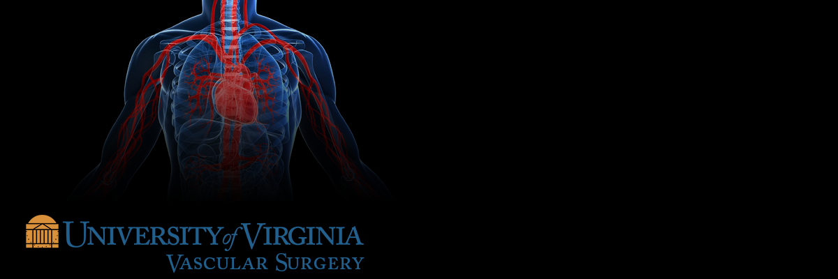 "<h2 class=""stars""> ★ ★ ★ </h2> <p>Recently, we were awarded by The Society of Vascular Surgery Patient Safety Organization (SVS PSO) with being in the top 10% of Vascular Quality Initiative (VQI) centers that received a 3 star rating (highest level) for participation in quality improvement.</p><br /> <strong> <a href=""https://surgery.virginia.edu/vascular/about/outcomes-report/"">View Our 2016 Outcomes Report</a></strong>"