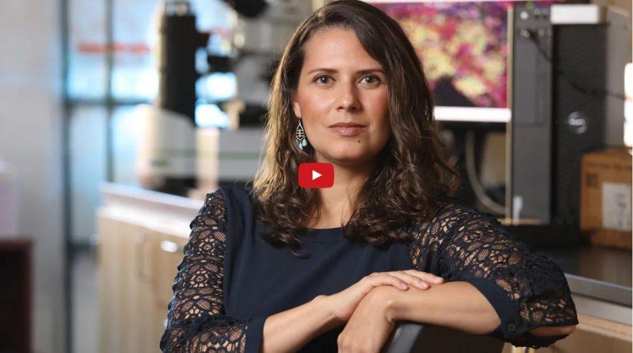 Ileana Mauldin, PhD