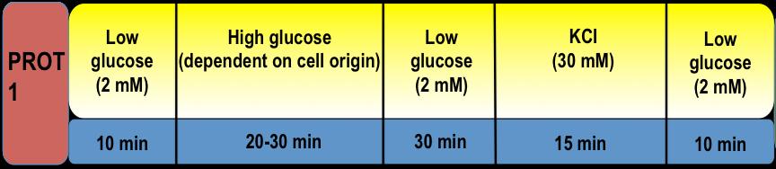 description of protocol 1 steps